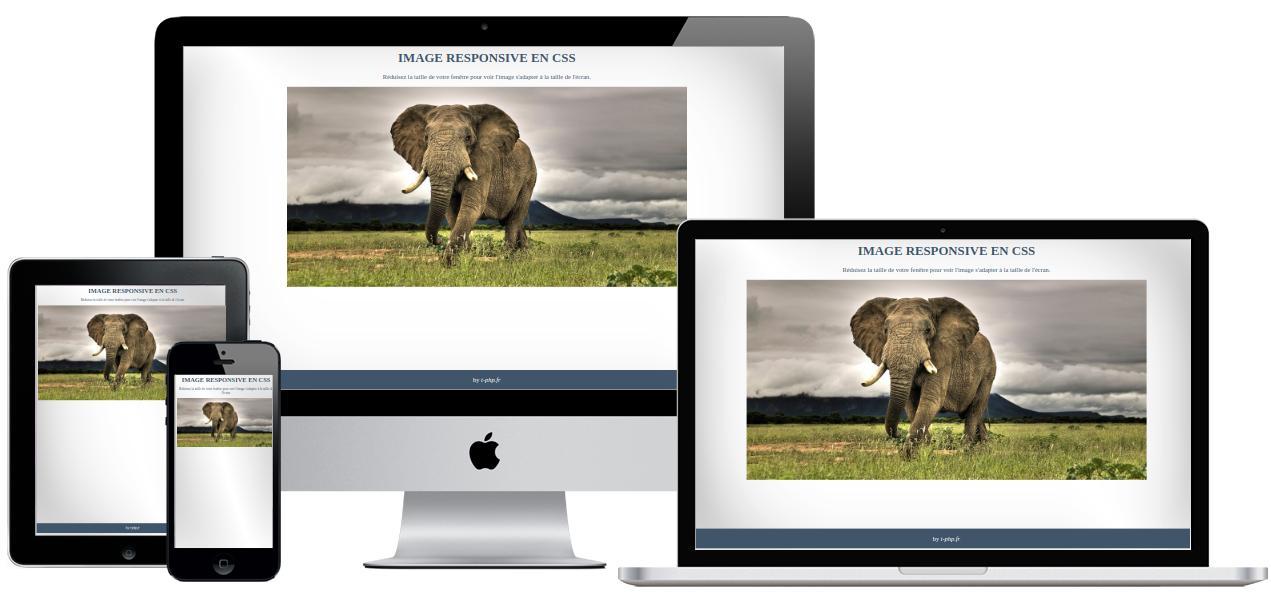 Image responsive en CSS