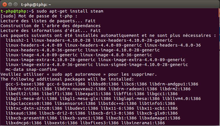 Steam sur Ubuntu via le Terminal
